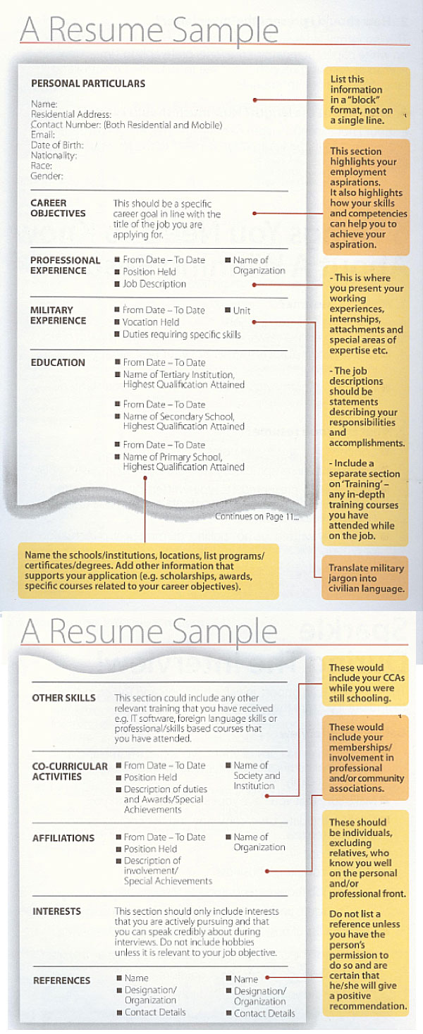 what is the next step after completing the resume - Sample Resume For Writer